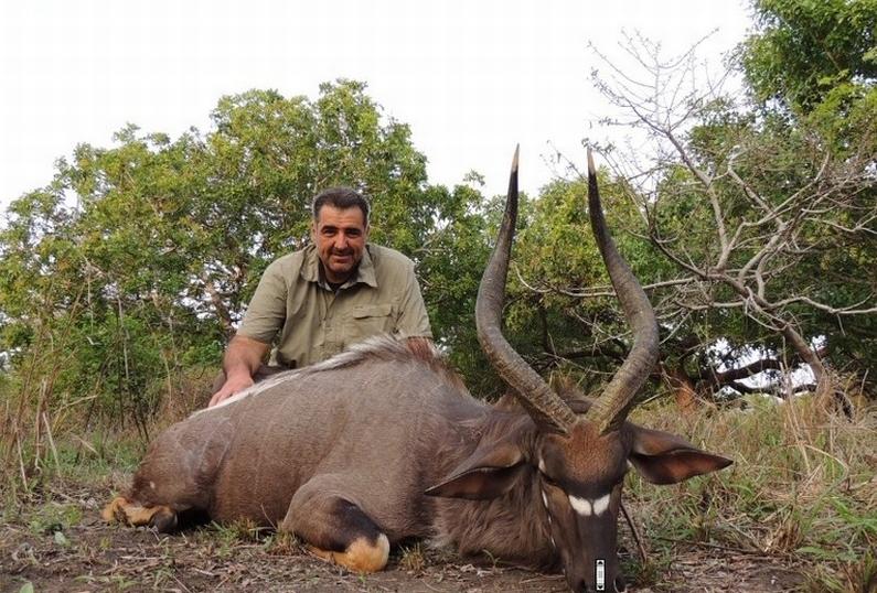 Nadan Vidošević - ubijanje životinja zbog zadovoljstva
